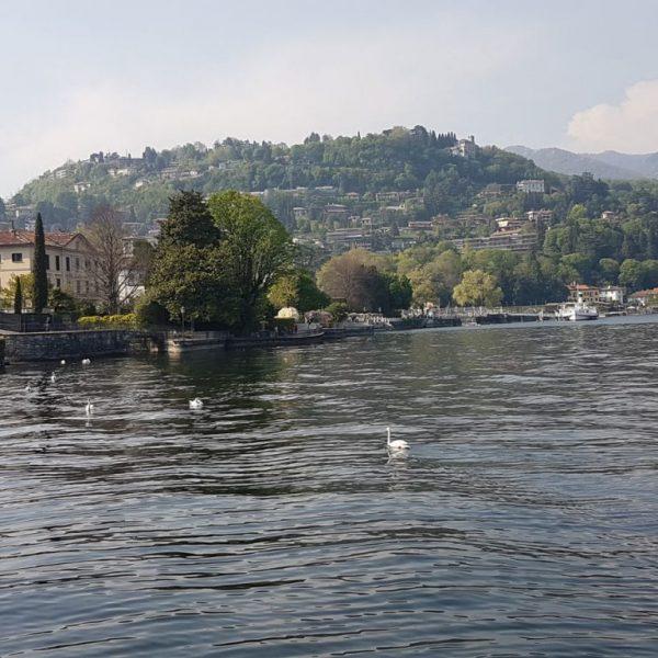 dasena dal lago